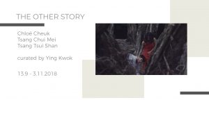 The Other Story Curated by Ying Kwok