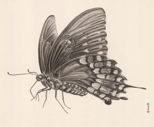 Women artists group show, Zhang Yirong, Butterfly, 2018,Chinese ink on rice paper,120x140cm